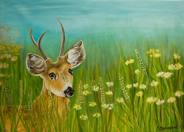 Ciervo de los pantanos. oil painting . Cynthia Bandurek