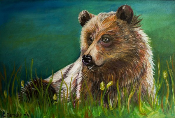 CynthiaBandurek.-Oleo . bear