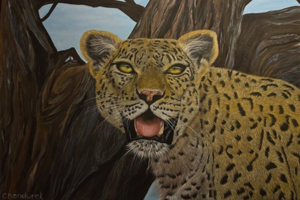 Leopard - Acrylic - Cynthia Bandurek