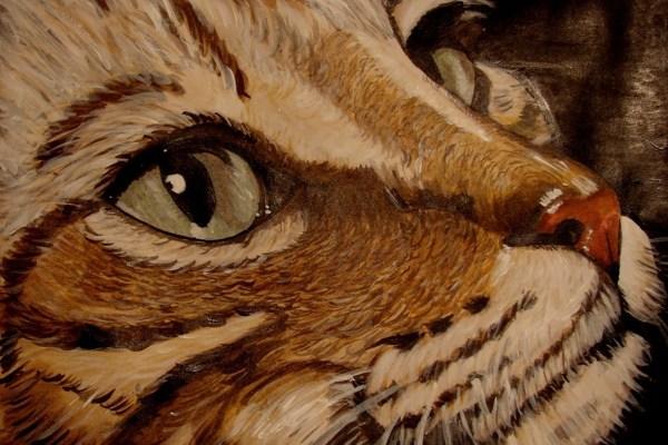 Cat . Acrylic - Cynthia Bandurek