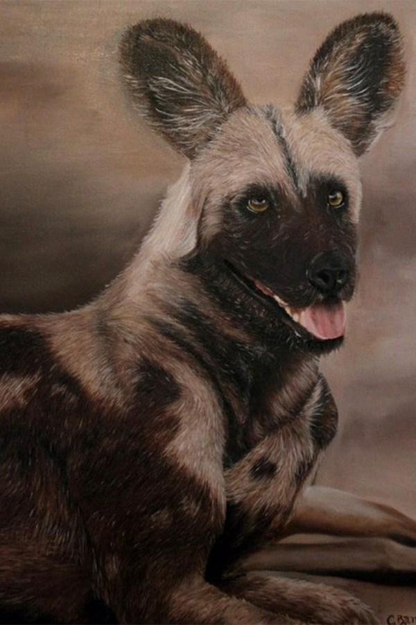African Wild Dog - Oil . Cynthia Bandurek