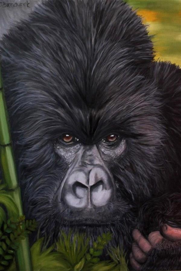 Gorilla - Oil painting - Cynthia Bandurek