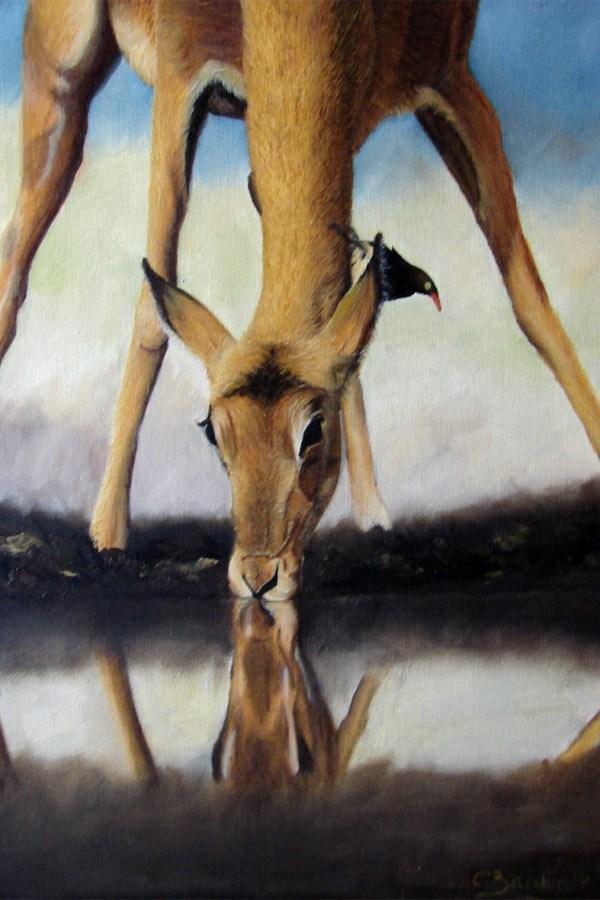 Impala. Oil panting. Cynthia Bandurek