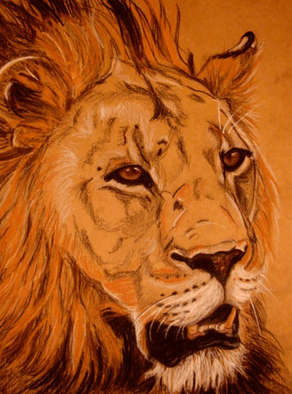 Chalk pastel - Lions - Cynthia Bandurek