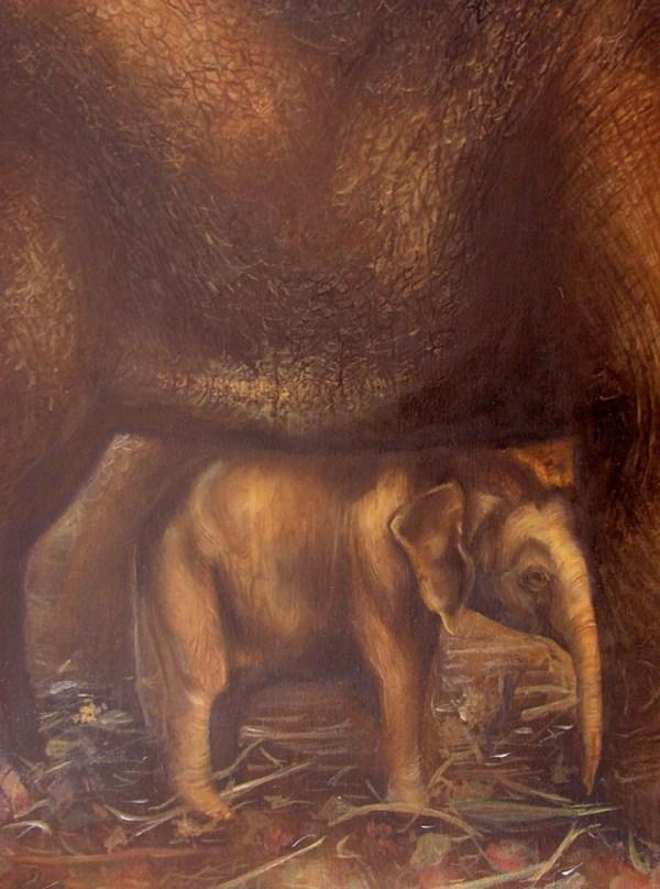 Elephants - Oil paintings . Cynthia Bandurek