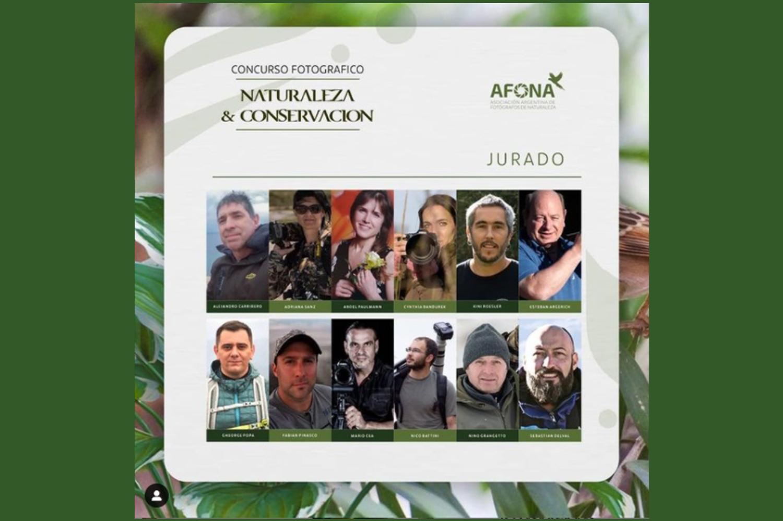 Jury of AFONA Photography Contest