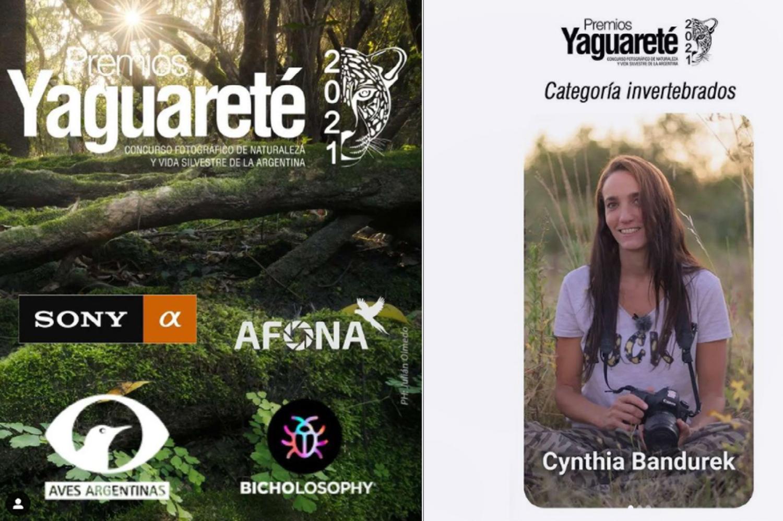 Jury of Premios Yaguareté. Photography Contest